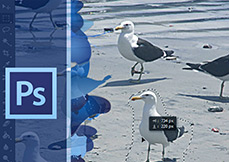 Curso-photoshop-cs6-atualizacao--PSCS6-AT_destaque
