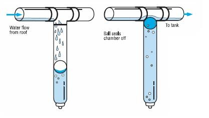 primeiras águas
